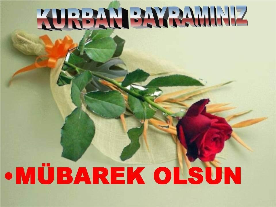 <b>Qurbanın qoyun olsun!</b>