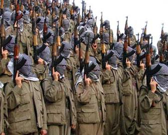 Türkiyə PKK-nın qaçırdığı bərəni geri aldı