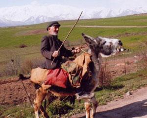 <b>Ermənistandakı əhalinin sayı açıqlandı</b>