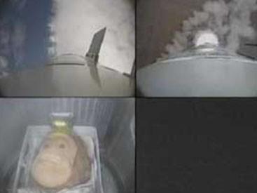 <b>İran kosmosa meymun göndərir</b>