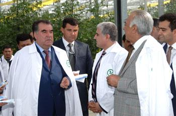 """Tacikistan prezidentindən """"Azərsun Holdinq""""ə təklif"""