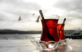 İçdiyimiz çaydır, ya zaydır? - <font color=red>Araşdırma</font>