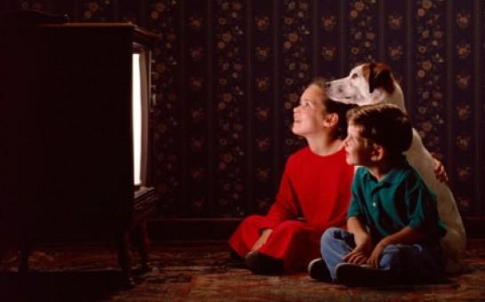 İtlər üçün televiziya