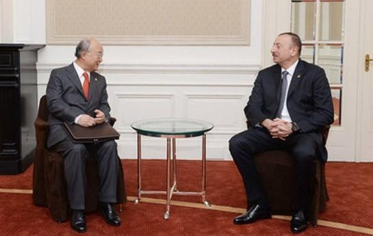 Prezident Atom Enerjisi Agentliyinin direktoru ilə görüşüb