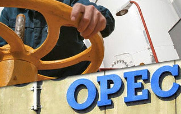 OPEC neft hasilatını nə qədər azaltmağı düşünür?