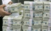 Mərkəzi Bankda dollar hərracı keçirildi