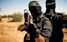 Çöl donuzları İŞİD-çilərə hücum etdi, ölənlər var