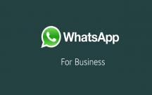 """""""WhatsApp Business"""" rəsmən təqdim olundu"""