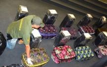 Səfirlikdə 400 kiloqram narkotik aşkarlandı