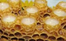 Azərbaycanda arı südü neçəyədir?