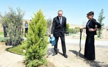 İlham Əliyev xanımı ilə ağac əkdi