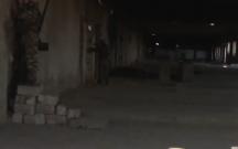 Naxçıvanda şərab zavodu da ermənilərdən geri alınıb