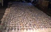 Qərbi Azərbaycan vilayətində 6 ton narkotik ələ keçirildi