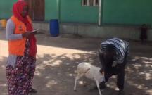 Xuraman 4-cü uşağı üçün Afrikada qurban kəsdirdi