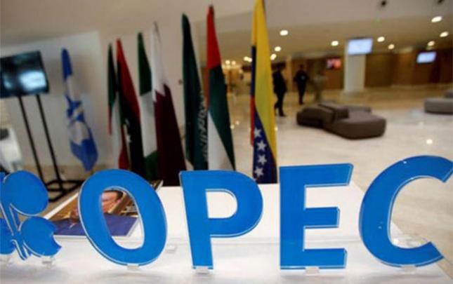 """""""OPEC"""" görüşü iyulun ilk həftəsində ola bilər"""