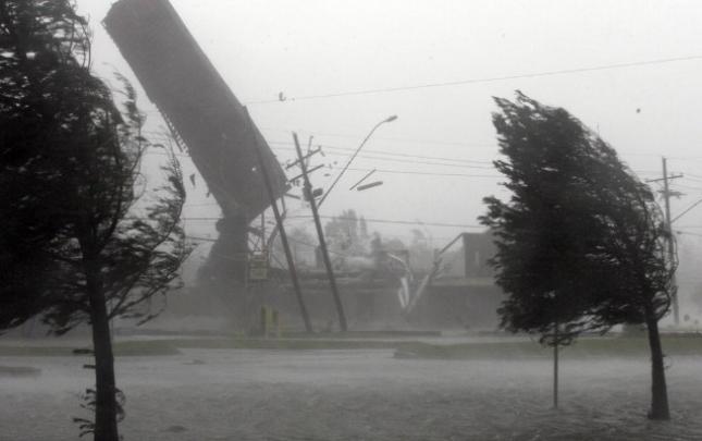 """""""Güclü külək ağacları elektrik xətlərinin üzərinə aşırıb"""""""