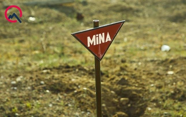 Həftə ərzində nə qədər ərazi minalardan təmizlənib?