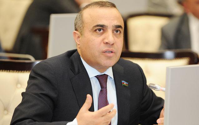 ATƏT PA-nın vitse-prezidenti beynəlxalq təşkilatlara müraciət etdi