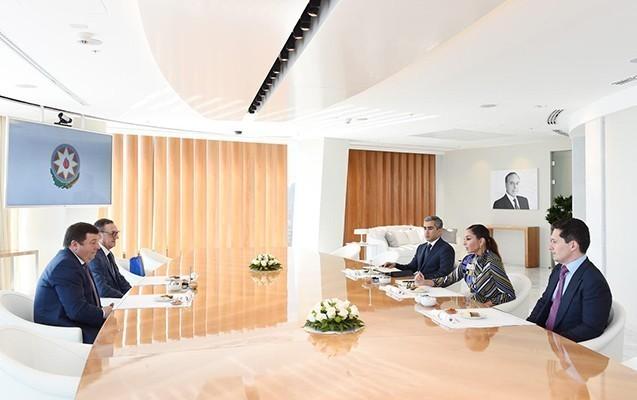 Mehriban Əliyeva rektorla görüşdü