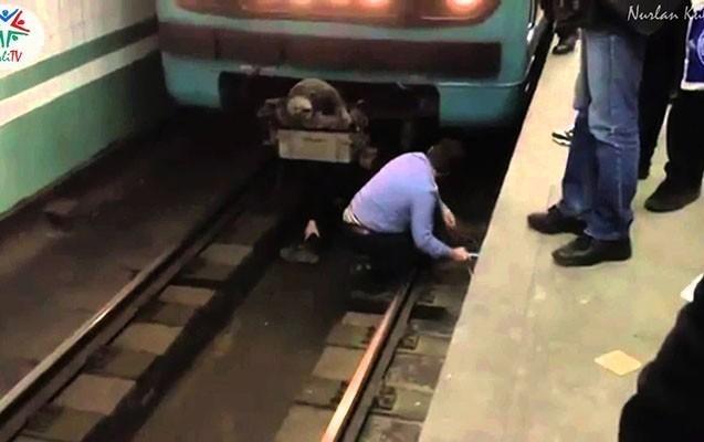 Metroda qatarın altına düşən şəxs narkoman olub