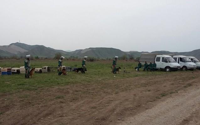 Cocuq Mərcanlıda 6 hərbi sursat, 2 minaatan mərmisi və raket tapıldı