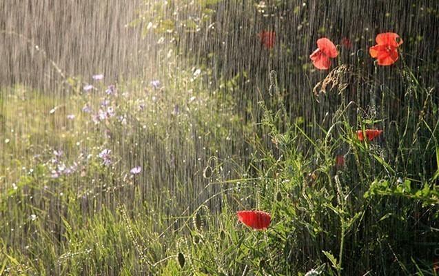 Hava pisləşəcək - Yağış, dolu gözlənilir