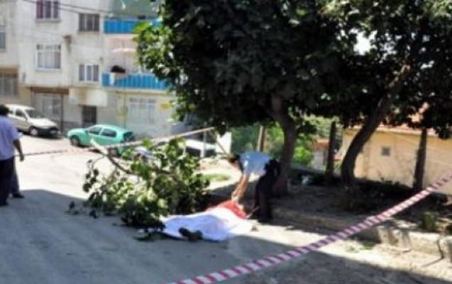 13 yaşlı uşaq ağacdan yıxıldı, öldü