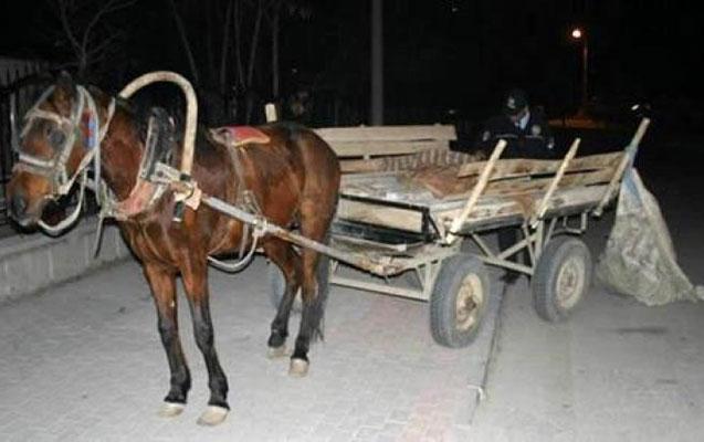 """""""KİA"""" at arabasını vurdu"""