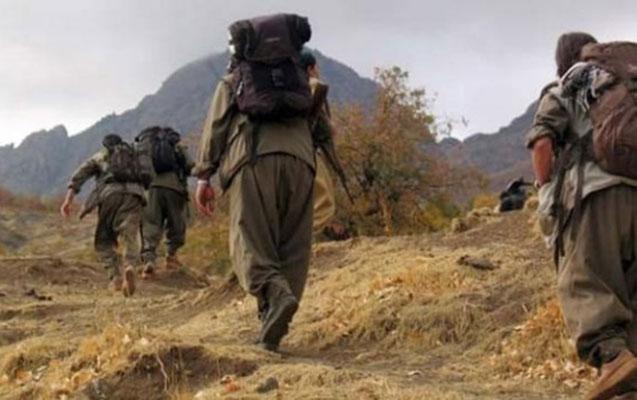 Qarabağda 1750 PKK-çı var