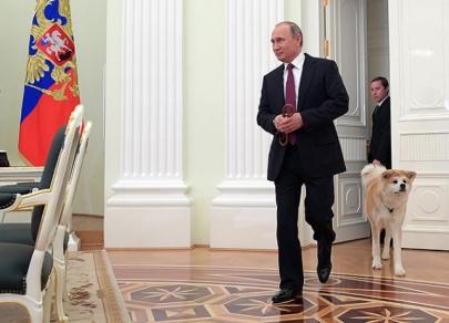 Rusiya liderinin dördayaqlı dostları... - Fotolar