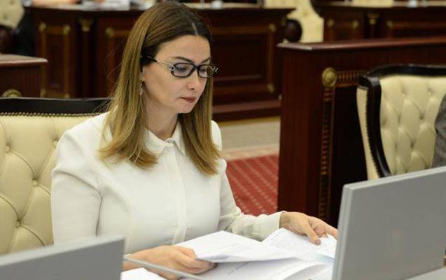 """""""DTX-nın əməliyyatları nəticəsində korrupsiya əməllərini gördük"""""""