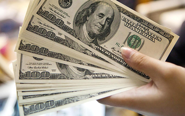 Dollar neçəyədir?