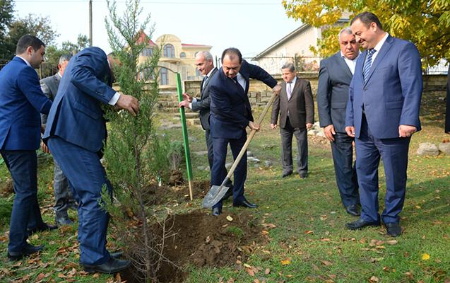 Taleh Qaraşovun iştirakı ilə 2 min ağac əkildi