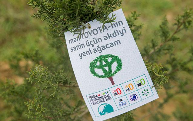 Toyota Qafqaz Bakıda ekoloji tədbir keçirib