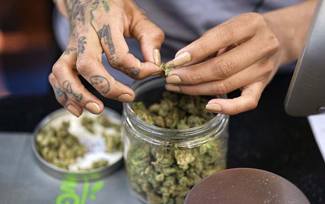 Kaliforniyada marixuananın rəsmi satışına başlanılıb