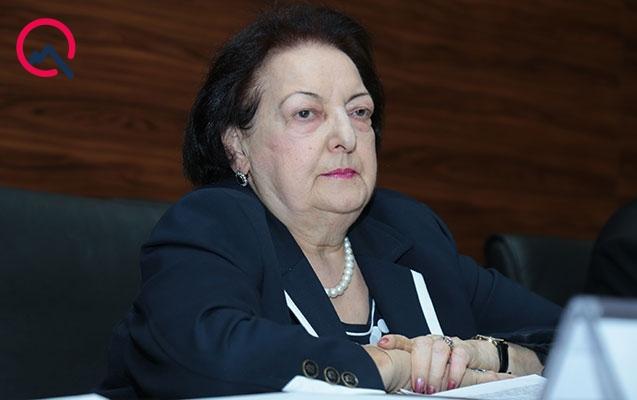 Elmira Süleymanova hesabat verdi