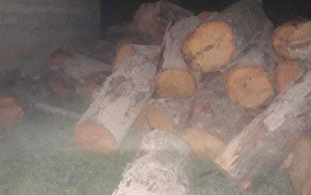 Qanunsuz yolla əldə olunmuş meşə materialı tapıldı