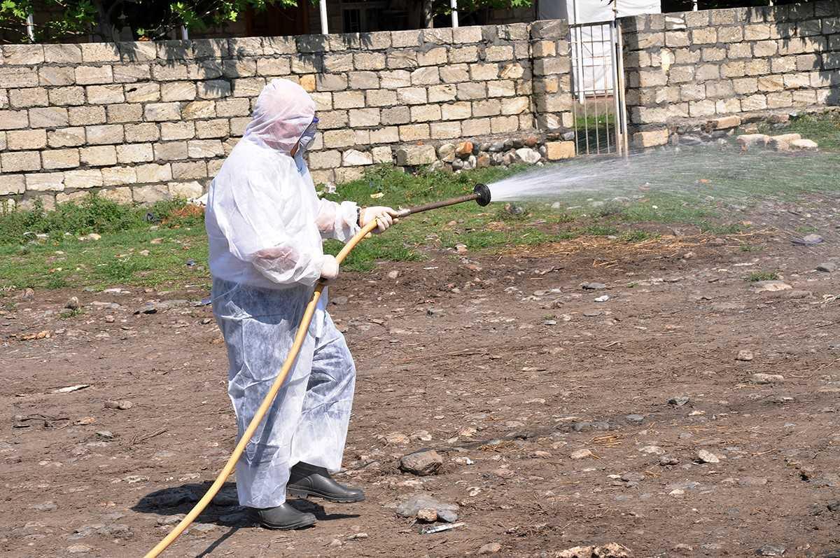 Qurbanlıq heyvanların satılacağı yerlər dezinfeksiya edildi