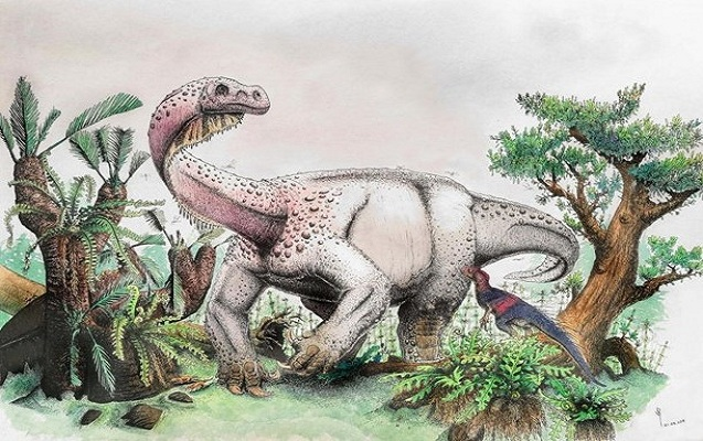 Yeni dinozavr növü kəşf edildi