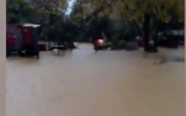 Lənkəranda kəndi su basdı