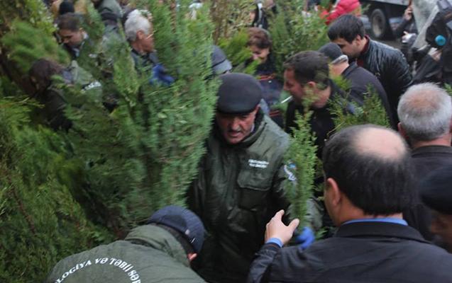 """""""Hər ailə ağac əksin"""" devizi altında 8000 ağac paylanıldı"""