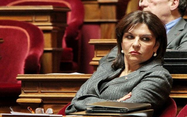 Senator Bako Saakyanın Fransaya səfəri haqqında
