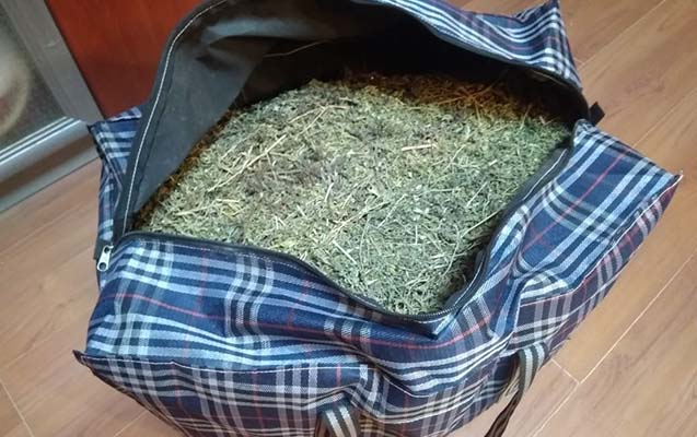 Gəncə sakininin üzərindən 10 kilo narkotik tapıldı