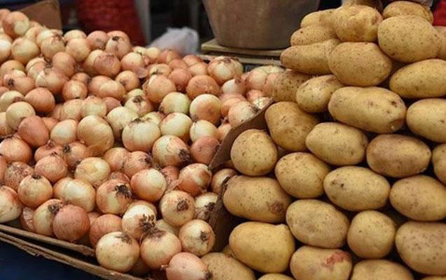 Kartof və soğanın qiyməti mayın sonu ucuzlaşacaq