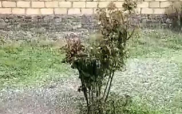 İsmayıllıya güclü dolu yağıb