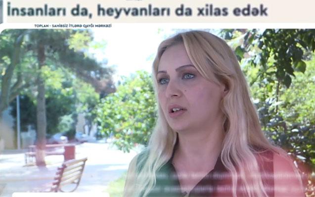 """""""Uşaqlar itlərin əlindən həyətə düşə bilmir"""""""
