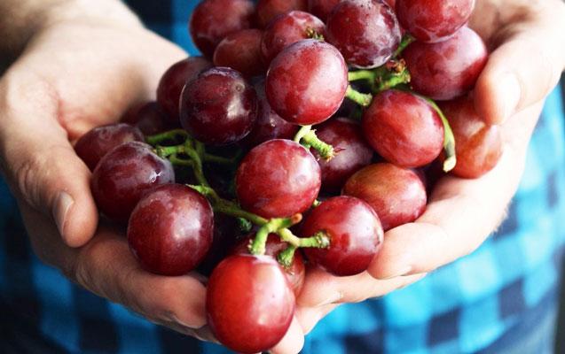 22 yaşlı gənc meyvə oğurlayıb satdı