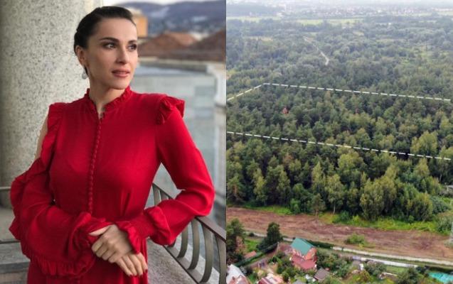 Azərbaycanlı aparıcı 45 milyonluq meşə sahəsi alıb