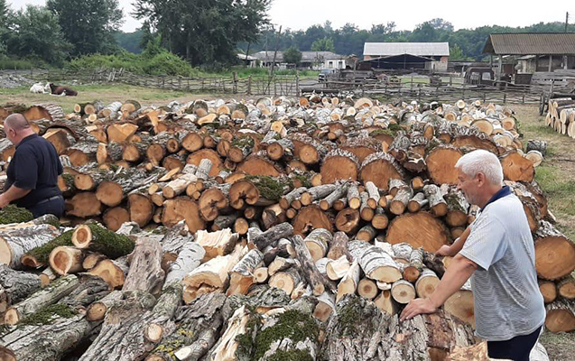 Rayonlarda odun yanacağını bu yerlərdən ala bilərsiniz