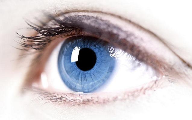 Göz üçün faydalı qidalar hansılardır?